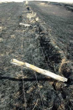 damaged-property-rangeland-fencing-after-a-wildfire