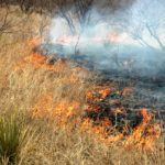 wildfire preparedness tips for ranching